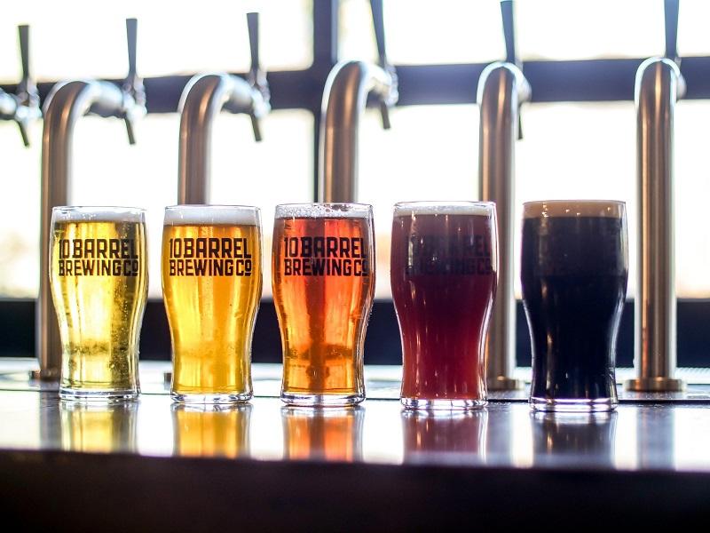 Cerveja faz bem?